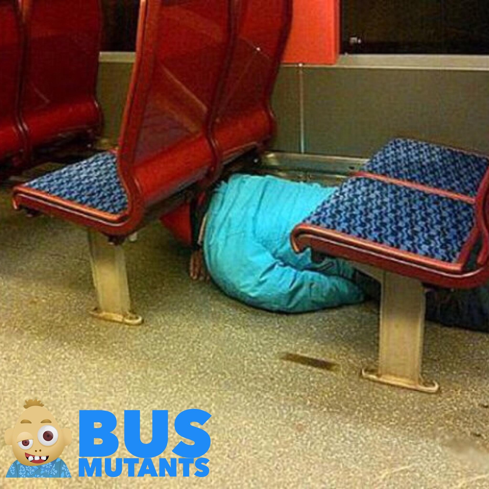 Bus Napper